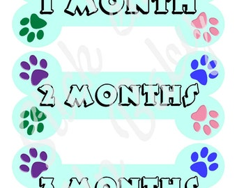 Monthly Puppy Milestone Stickers