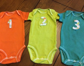 Month Onesies (12), Hand Dyed and Appliqued