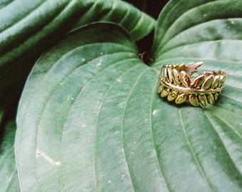 Fern Brass Boho Ring
