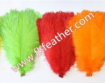 """18"""" - 20"""" Ostrich Feather"""