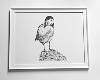 The Watchful Puffin Print