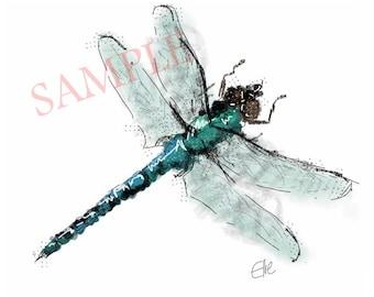 Dragonfly - A4 print