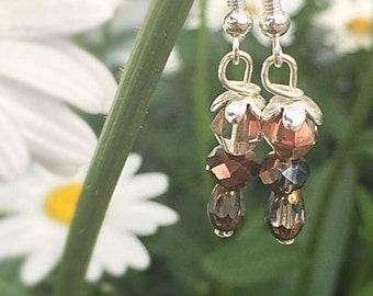 Brown/pink dangle earrings