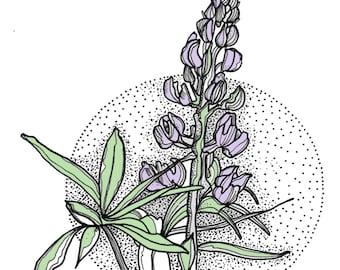 Lavender Daze - greeting card