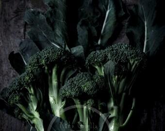 Food Photography Print, Fine art Photography, Photographyc Prints, Wall Decor, Itaian broccoli