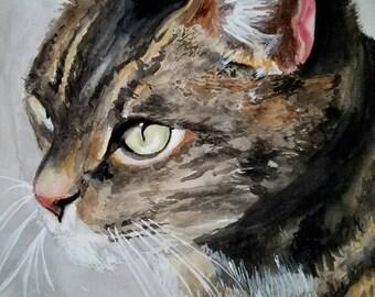Pet Portrait- 8x10 Original Watercolor Commission