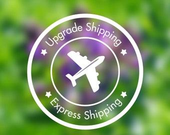 Express shipping 2-3 days shipping