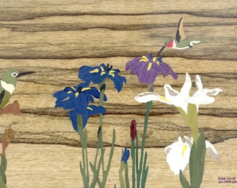 Japanese Iris and Hummingbirds