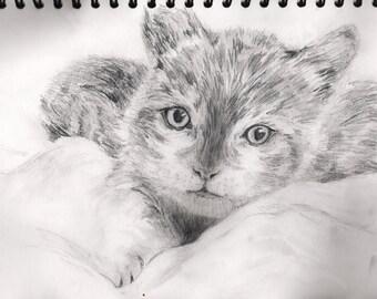 A4' Custom Animal/Pet Pencil Print