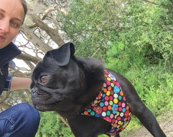 Dog Harness: 'Pretty but tough'