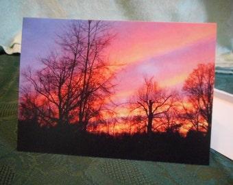 Blank Greeting Cards ...bright sunset photo, blazing sky, tree silhouette ... #12