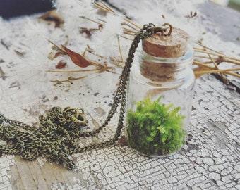 Living Moss Pendant Necklace