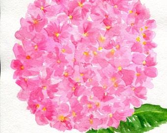 Hydrangea watercolors paintings original 8 x 10 Pink Hydrangea Watercolor Painting, Flower Painting, Pink Wall Art, hydrangeas