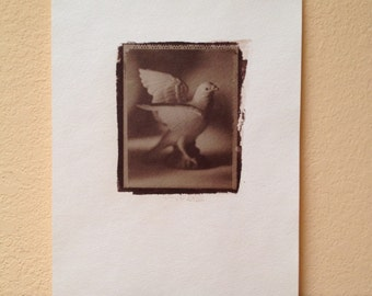 Salt Print of Ceramic Dove