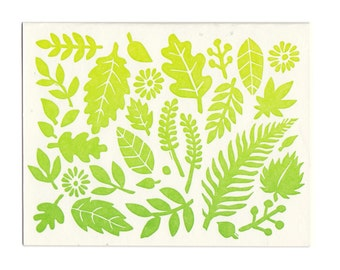 Spring Leaves letterpress greeting cards, set of 5 cards, blank inside, made in Maine, leaves, fall, spring, green, nature, woods, forest