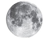 Full Moon Vinyl Wall Decal - Varying Sizes