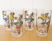vintage duck glasses Kentley