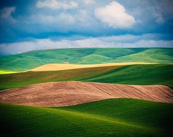 Palouse Photography, Rural Landscape Photo, Agriculture, Curvy Hills, Green Nature, Palouse Fine Art, Washington State