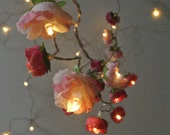 Bohemian Garden Mixed Rose Fairy Lights  Pretty Flower String Lighting in Red and Pinks