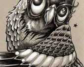 Decorative Pen and Ink Owl art print by Bryan Collins
