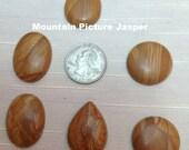 Cabochons-Patterned Mountain Picture Jasper 18x25mm TEARDROP