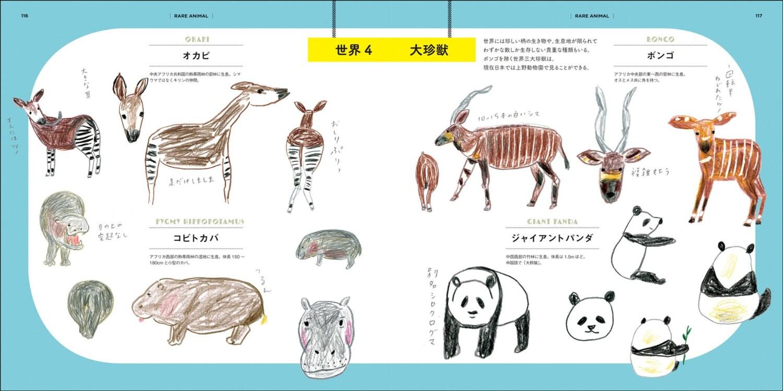 let u0027s draw zoo animals illustration lesson book japanese craft