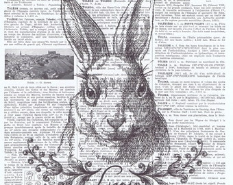 Rabbit,lapin.bunny.bunnie.hare.french antique book page print.mixed media.paris.birthday.mom.dad.vintage.collage.repurposed.eco.deco.student