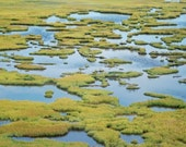 Blue Speckled Salt Marsh Stone Harbor New Jersey Fine Art Photograph