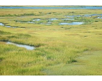 Beach House Decor Salt Marsh Landscape Stone Harbor New Jersey Fine Art Photograph