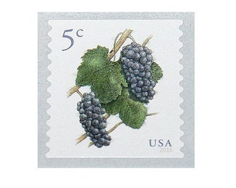 Twenty 5c Grapes and Vine Stamps .. Unused US Postage Stamps .. Pack of 20 stamps, Vineyard weddings, fruits on stamps, Napa Valley, Wine