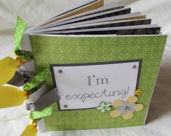 Mini Premade Scrapbook Album - PrEGnAnCY  paper bag book -- I'M EXPECTING! -- I'm pregnant - baby boy or baby girl, pregnancy journal