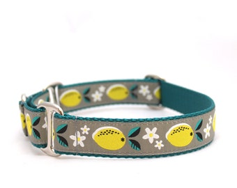 "1"" Juicy Lemons buckle or martingale dog collar"
