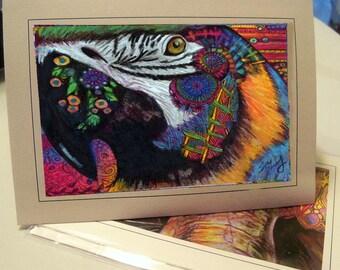 greeting card print of original art-macaw parrot Zentangle