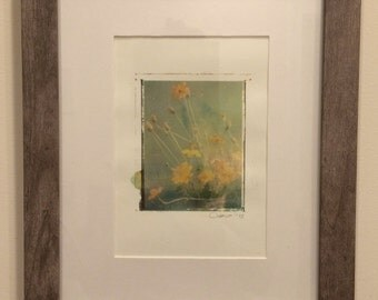 Polaroid transfer - framed original Yellow Cosmos in gray frame