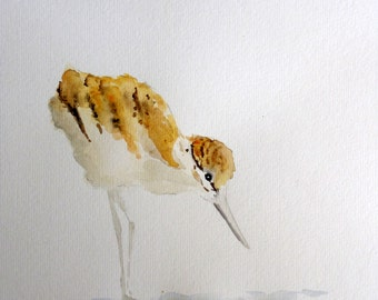 Shorebird watercolor painting baby bird Nursery art A is for Avocet