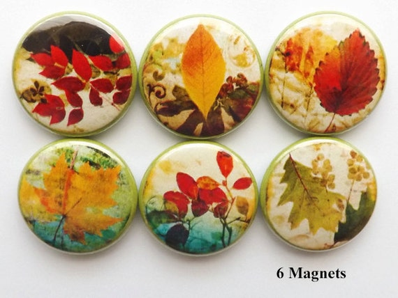 Fall Leaves fridge MAGNETS autumn nature party favor stocking stuffer shower hostess gifts thanksgiving home decor holiday pins flair rustic