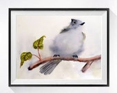 BirdArt Fine Art Watercolor PRINT, Small grey bird painting, Titmouse artwork, Natural history bird illustration, Small grey bird wall decor