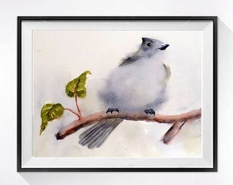 Woodland Animal Art Prints | Nature Bird Prints, Oak Titmouse song bird print, Fine art watercolor, Grey painting, Natural history art print