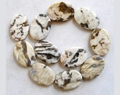 Zebra Agate Beads- Oval Earth Tone Gemstone Beads For Jewelry Making and Beaded Jewelry