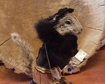 Taking the edge off- anthropomorphic taxidermy ground squirrel