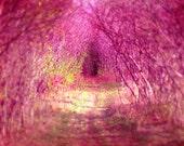 Nursery wall art, home decor, fairyland, fairytale, baby girl, wonderland, for girls, honeysuckle pink, violet, playroom