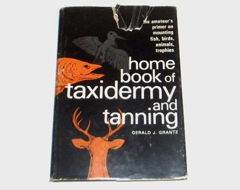 1960s vintage taxidermy book / 60s book / Home Taxidermy Book