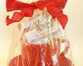 Peppermint Handmade Soap Gift Set