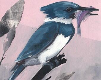 "Belted Kingfisher - bird art print, 6"" x 6""."