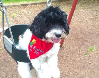 Birthday Dog Bandana for BOY in COLLAR Style Choose Fabric & Size