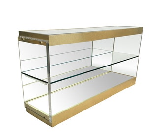 Vintage Lucite and Brass Mirrored Display Cabinet Case Console