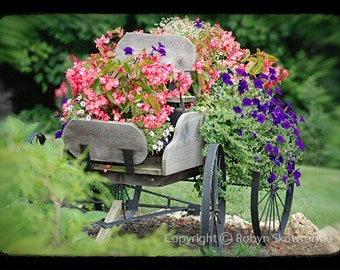 Summer Splendor - Signed, Matted and Mounted 5x7 Fine Art Photograph