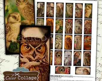 Owls Digital Collage Sheet, 1x2 Domino Images, Vintage Owls, Images for Jewelry, Domino Images, Printable Paper, Digital Download, Printable