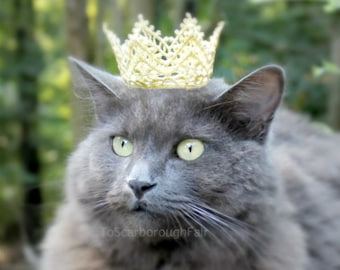 Cat Crown - Dog Crown - The White Queen - Princess Crown for Cat - Lace Cat Puppy Crown - Cat King Crown - Pet Prince Crown -
