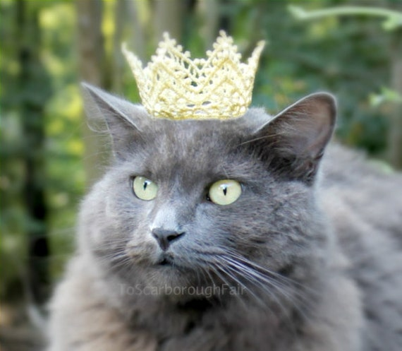 Royal Cat Crown - Dog Crown - The White Queen - Lace Cat Puppy Crown - Cat King Crown - Pet Prince Crown - Cat Princess